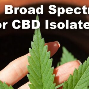 Full Spectrum vs Broad Spectrum vs CBD Isolate: What's the Difference?  | Plant Driven Health
