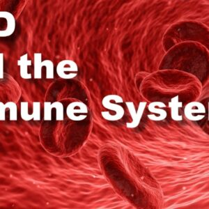 CBD and the Immune System: Can CBD Keep You Healthy