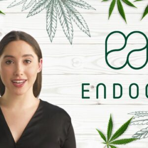 CBD Dosage - How Much Should you Take?