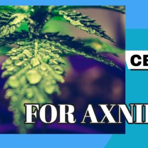 CBD for Depression and Anxiety Sufferers