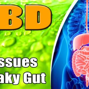 CBD & Gastrointestinal Issues and Leaky Gut Syndrome - azWHOLEistic