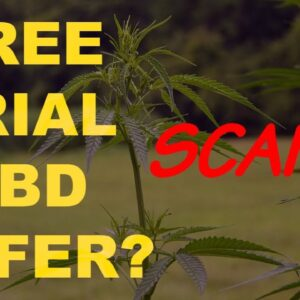 CBD Oil Free Trial - A Scam or a Great Deal?