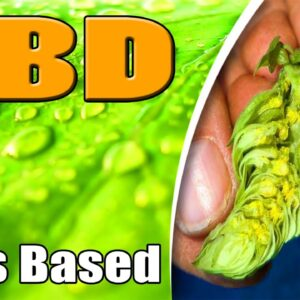 HOPS Based CBD Is Here - azWHOLEistic