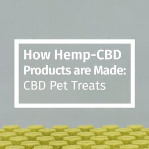 How Hemp-CBD Products are Made: CBD Pet Treats
