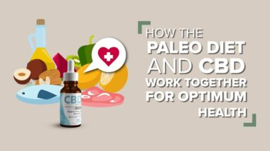 How The Paleo Diet and CBD Work Together For Optimum Health