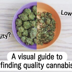 How to find high quality cannabis