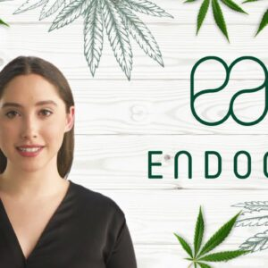 How to Find High-quality CBD Products Online?