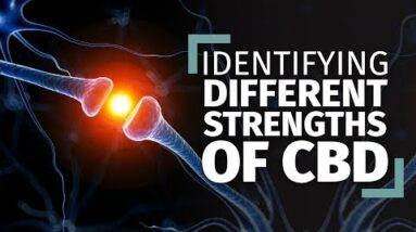 Identifying Different Strengths of CBD