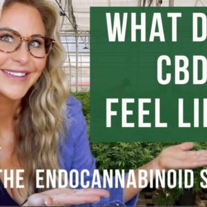 How CBD makes you less anxious! 📉 The Endocannabinoid system explained!