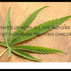 Medical Marijuana for Cancer.