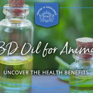CBD Oil for Animals Course | Centre of Excellence | Transformative Education & Online Learning