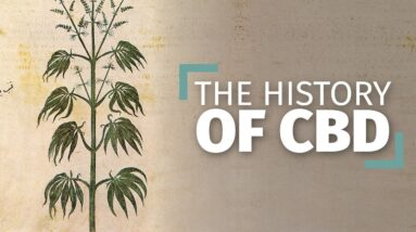 The History of Hemp and CBD