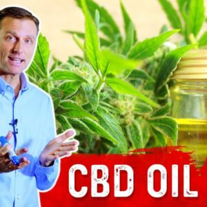 What is CBD Oil? Benefits and Function