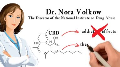 What is CBD? The Endocannabinoid System Explained in 3 mins