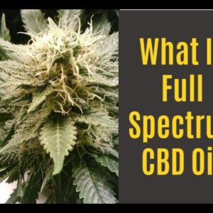 What is Full Spectrum CBD Oil?  Benefits, Drawbacks and Options!