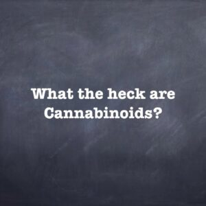What the heck are Cannabinoids?