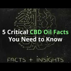 5 Critical CBD Oil Facts You Need to Know