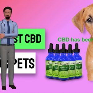 Best Cbd Oil For Dogs With Cancer -  Best Cbd Dog Treats For Cancer