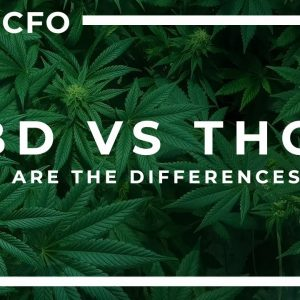 CBD vs THC accounting: 5 Things You Need to Know