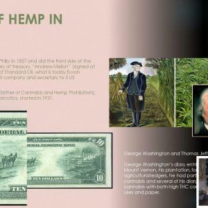 History of Cannabis, What is CBD and How does it work?