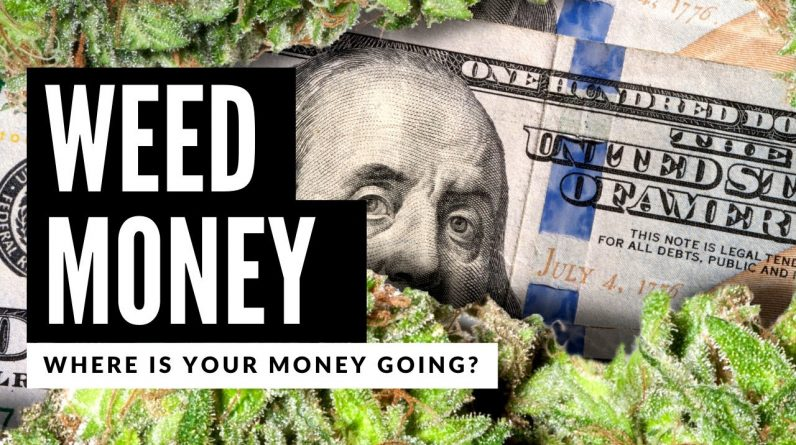 Legal Weed Made More Money Than the Government Knows What to Do With