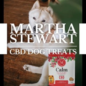 Martha Stewart CBD for Dogs Click to see Link⏹
