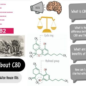 Questions about CBD (Part 1): What is CBD?