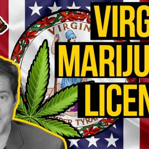 Virginia Cannabis Licenses Timelines & Social Equity