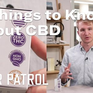 What Is CBD? | 5 Things to Know Before You Dive In