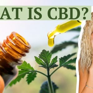 What is CBD and what does CBD do - how does CBD affect our body