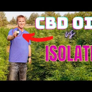 What is CBD? The Difference Between CBD oil and CBD Isolate.