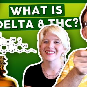 """WHAT IS DELTA-8 THC? aka """"Weed's Little Brother"""""""