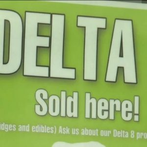 What is the difference between Delta 8 and Delta 9 THC?
