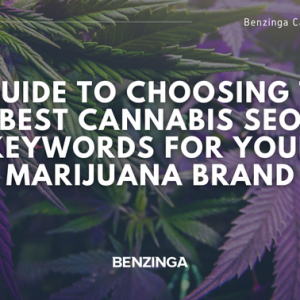 A Guide to Choosing the Best Cannabis SEO Keywords for