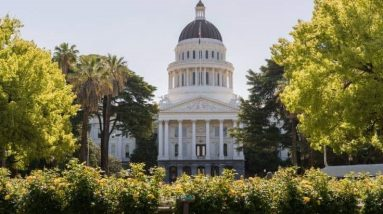 California approves 100 million grant to boost the cannabis
