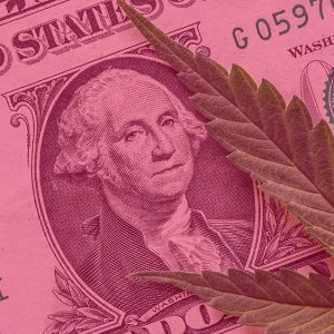 Canadian company acquires Vermont Medical Cannabis Company