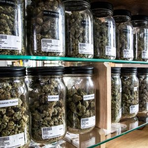 What is at stake if the lawsuit impedes Detroits recreational