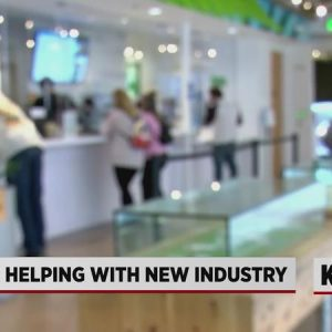 New Mexico Bank Ready to Do Business with the Recreational
