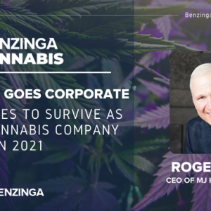 What It Takes To Survive As A Public Cannabis Company