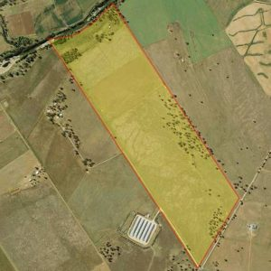 Canns Proposed NSW Cannabis Project In Public Comment Period